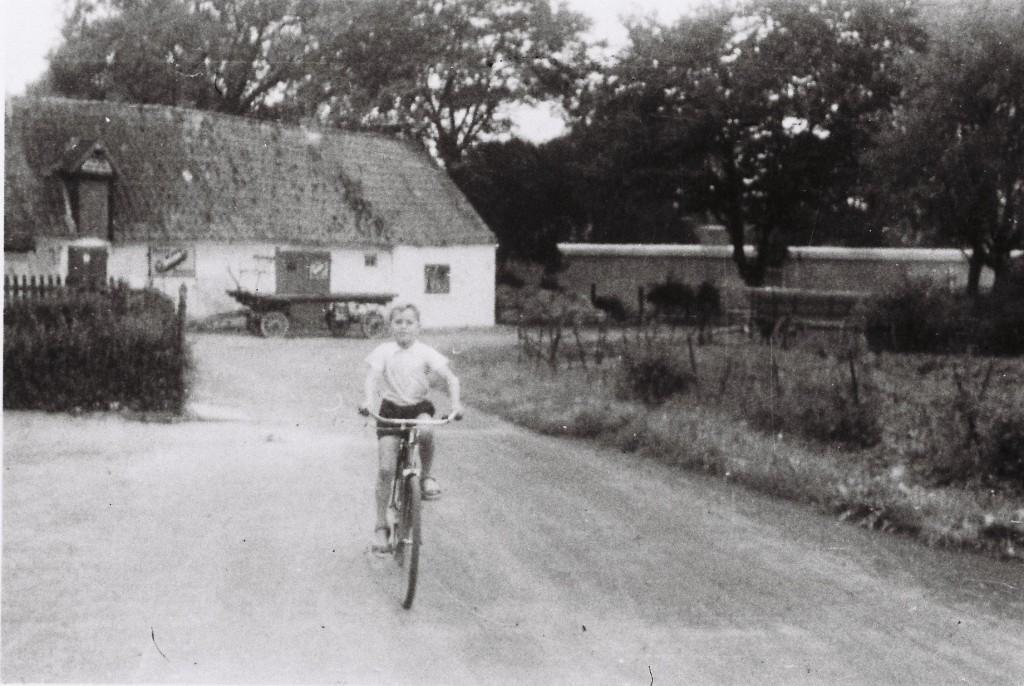 Der Bunker auf Lahrs Weide (im Hintergrund rechts)
