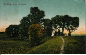 Postkarte vom Korbhaus aus dem Jahre 1909. Blick auf den Weserdeich aus Richtung Dreye
